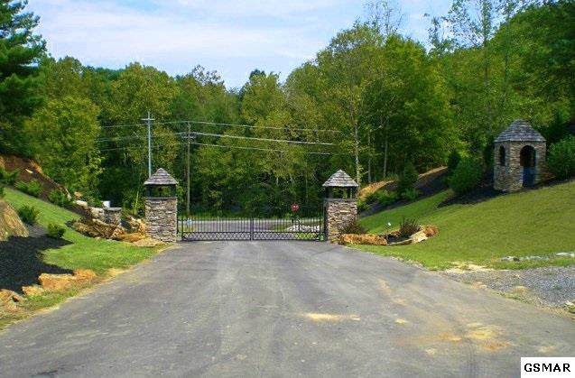 2467 Happy Creek Road, Sevierville, TN 37862 (#225683) :: Billy Houston Group