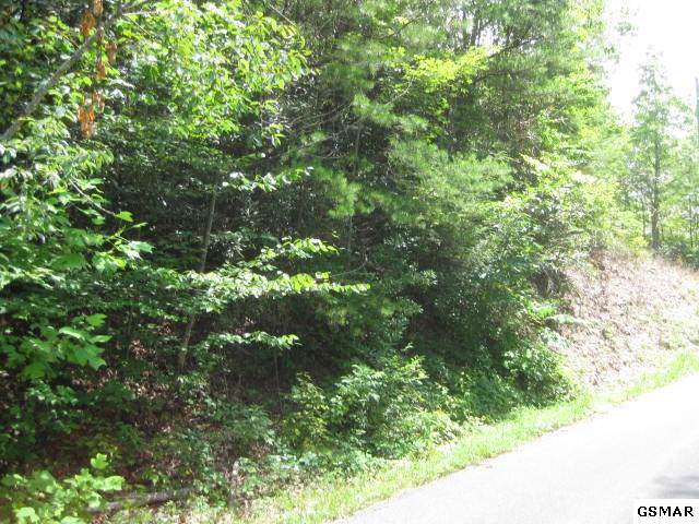 00 Black Gum Gap Road, Gatlinburg, TN 37738 (#225684) :: Prime Mountain Properties