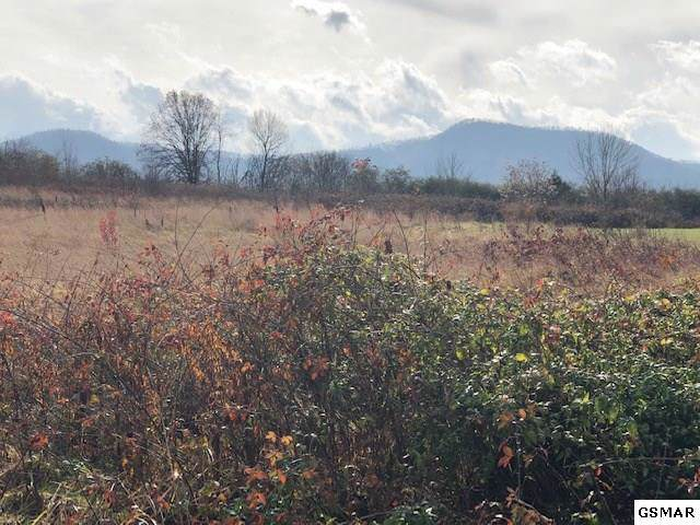 LOT 15 A Newport Hwy., Sevierville, TN 37876 (#225940) :: Prime Mountain Properties
