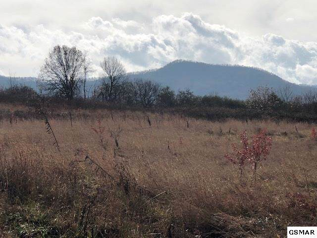 LOT 15 B Newport Hwy., Sevierville, TN 37876 (#225943) :: The Terrell Team