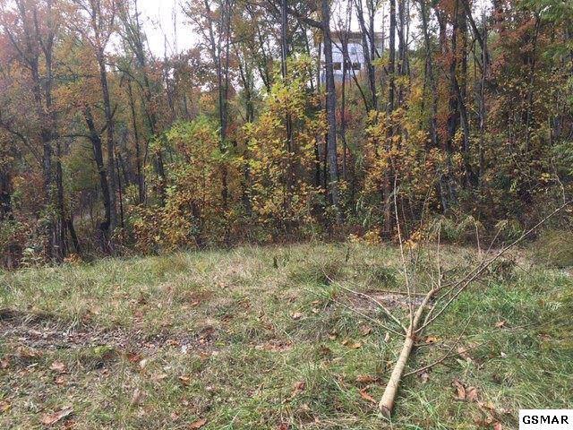 844 Crooked Ridge Rd, Gatlinburg, TN 37738 (#226087) :: Four Seasons Realty, Inc