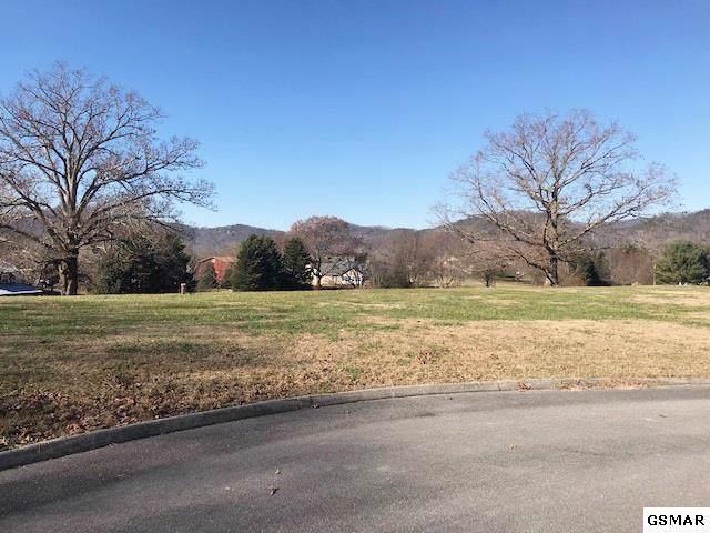 Lot 5 Buck Hill Drive, Sevierville, TN 37862 (#226217) :: The Terrell Team