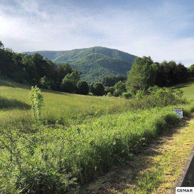 Lot 71 Clear Valley Dr, Sevierville, TN 37862 (#226254) :: Colonial Real Estate