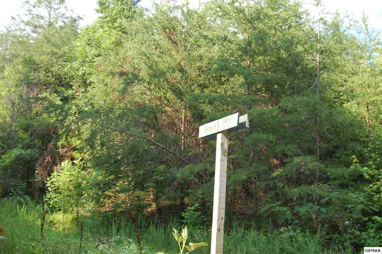 Lot 8 Bronte Way - Photo 1