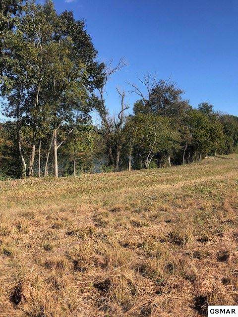 25 ACRES Boyds Creek Highway ( Off ) - Photo 1