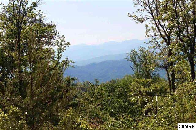 Lot 116 Summit Trails Drive, Sevierville, TN 37862 (#226589) :: The Terrell Team