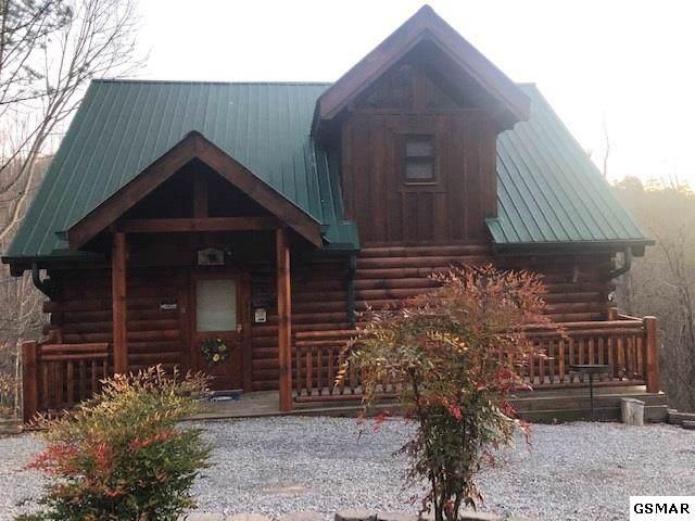 2233 Beach Front Drive, Sevierville, TN 37876 (#226600) :: Prime Mountain Properties