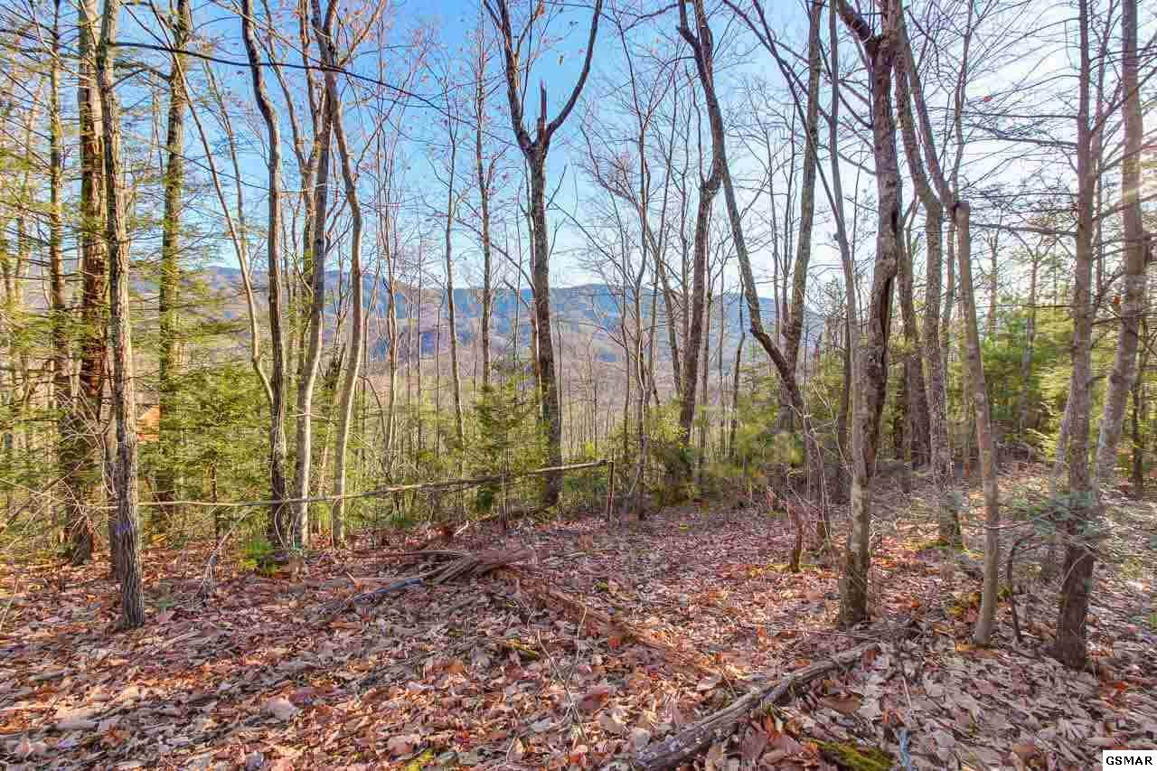 Lot 40 Mathis Hollow Road - Photo 1
