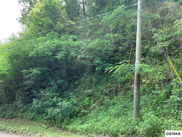 Lot 6 Pulaski Lane, Sevierville, TN 37862 (#226692) :: Colonial Real Estate