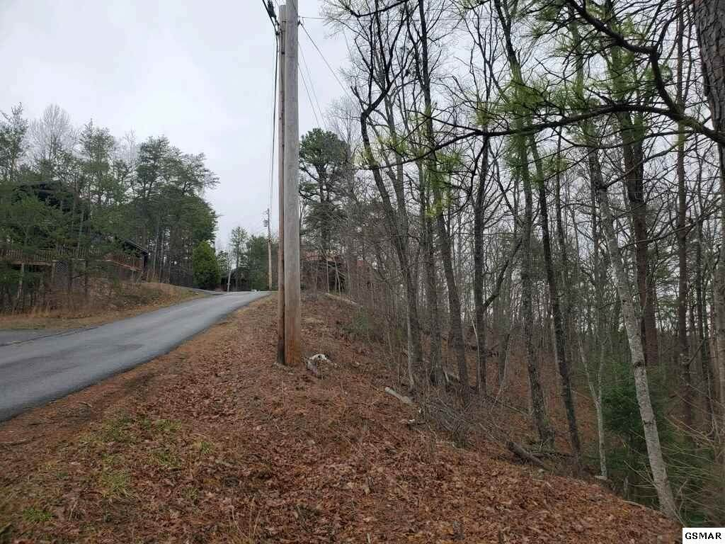 Lot 417 Ski View Lane - Photo 1