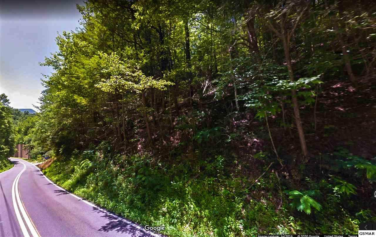 P/O Parcel 152 Buckhorn Rd - Photo 1