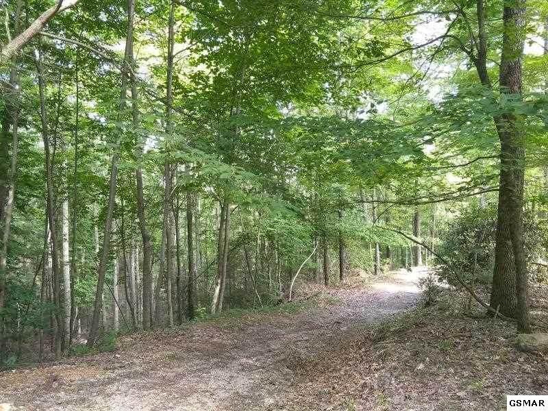 Carrs Creek  Road - Photo 1