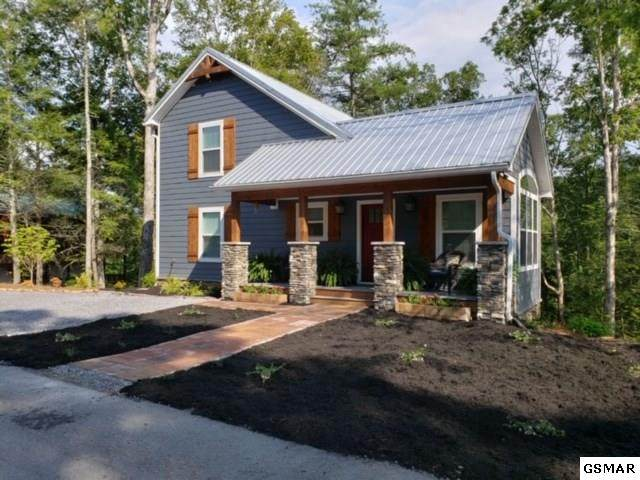 194 Cold Springs Tr, Townsend, TN 37882 (#226903) :: Colonial Real Estate