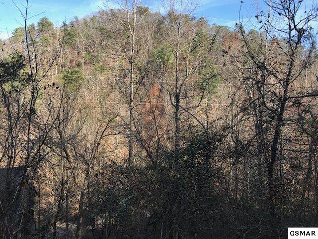 Sugar Mountain Way Lot #3, Pigeon Forge, TN 37863 (#226947) :: Colonial Real Estate