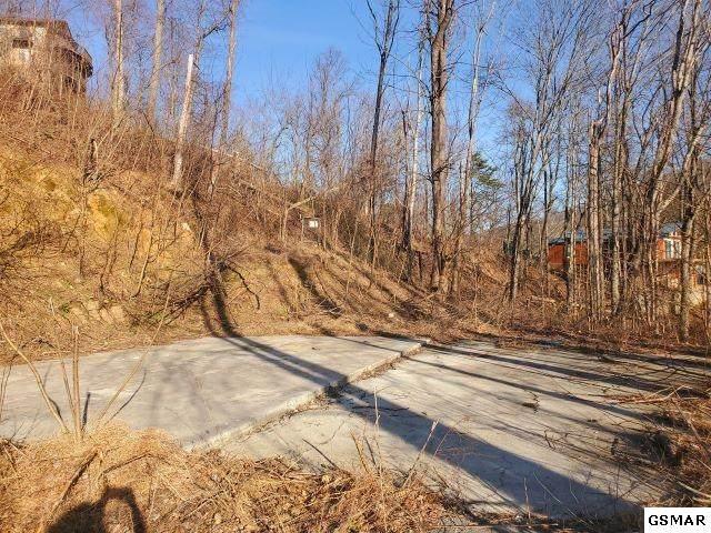 564 Woodland Dr - Photo 1