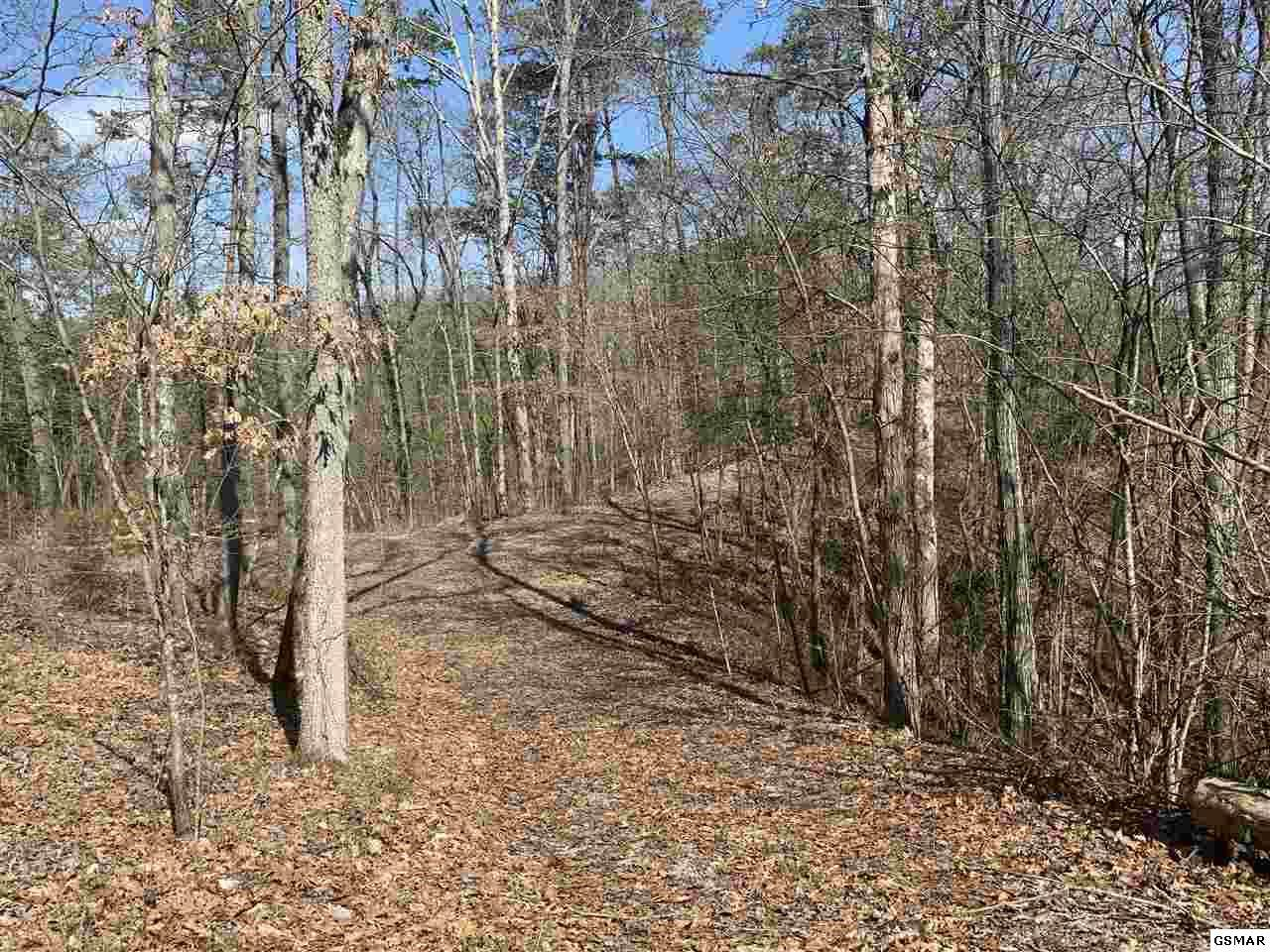 Lot 19-R Indian Creek Road - Photo 1