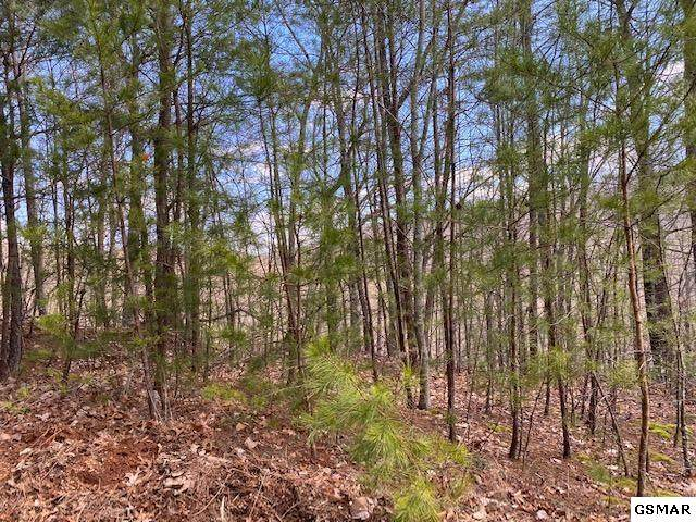 Lot 428 Ski View Ln, Sevierville, TN 37876 (#227148) :: Colonial Real Estate