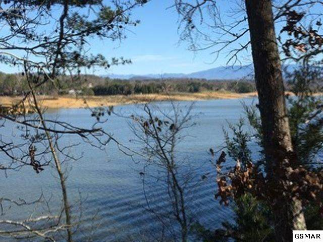 000 Lake Oaks Way, Sevierville, TN  (#227445) :: Colonial Real Estate