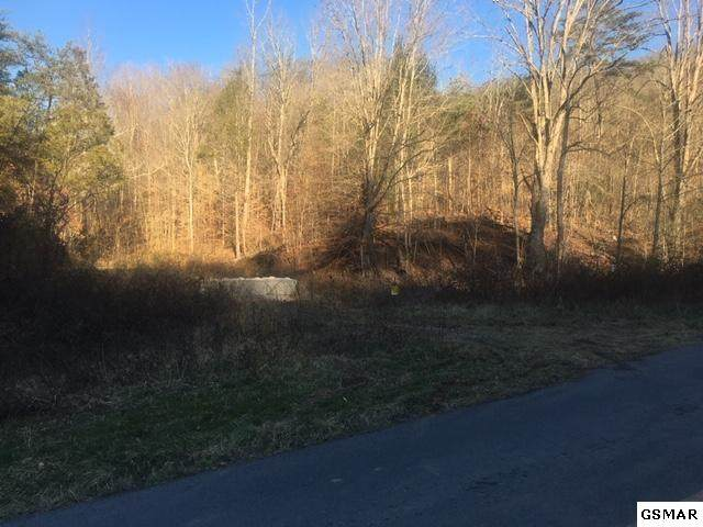 4 parcels Sharp Rd, Sevierville, TN 37876 (#227532) :: Four Seasons Realty, Inc