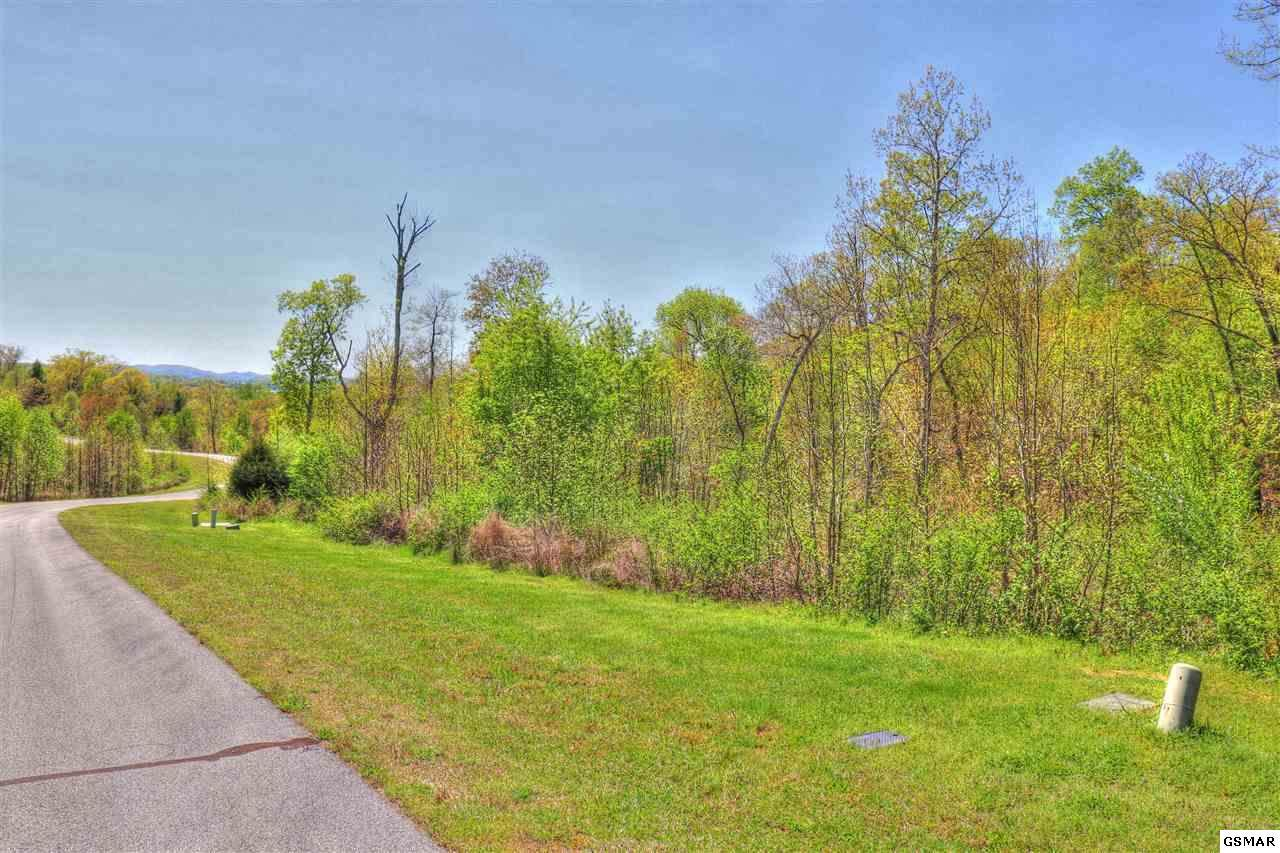 Lot 361 Water Viewdr - Photo 1