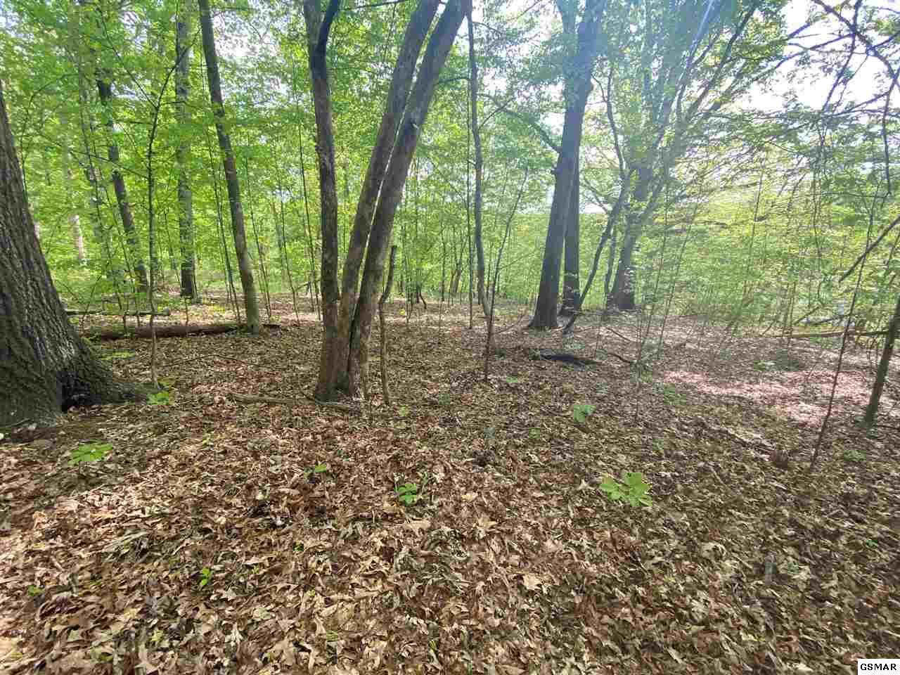 Lot 1402 Hillside Place - Photo 1