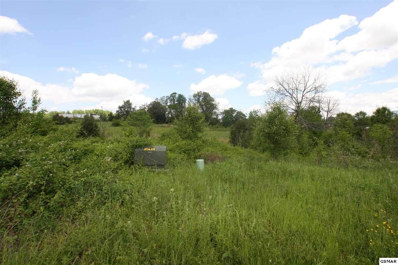 Lot 16 Sybill Lee Lane - Photo 1