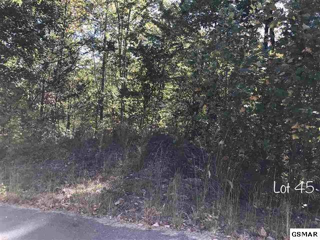 Lot 45 Schisandra Ln, Cosby, TN 37722 (#228136) :: The Terrell Team