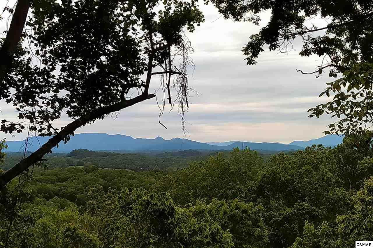 2019 Cluster Oak Way - Photo 1