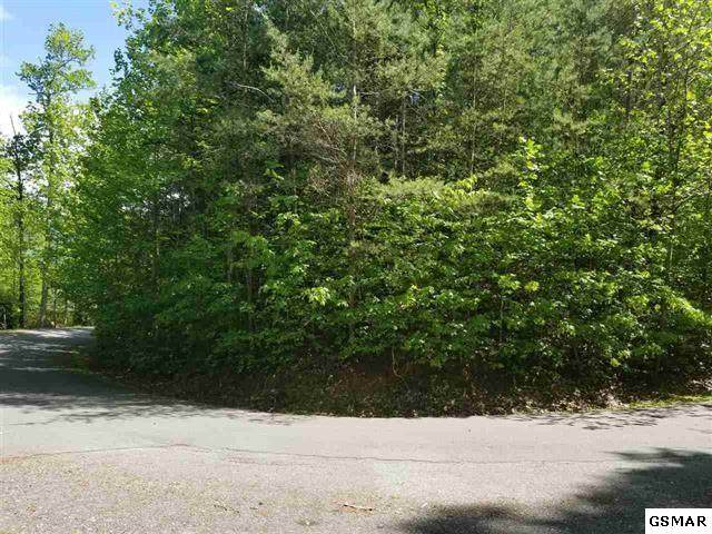 Lot 31 Riversong Way, Sevierville, TN 37876 (#228390) :: Colonial Real Estate