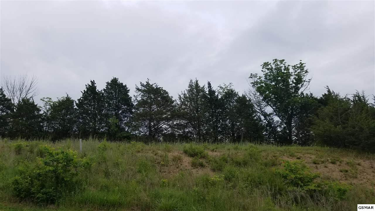 Lot #93 Blue Herring Way - Photo 1