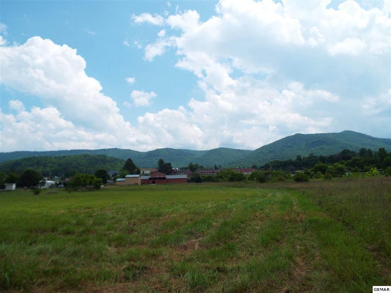 Lot 7 Padgett Mill Rd - Photo 1