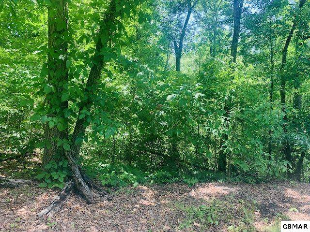 Lot 2 W Madison Drive, Sevierville, TN 37876 (#228621) :: The Terrell Team