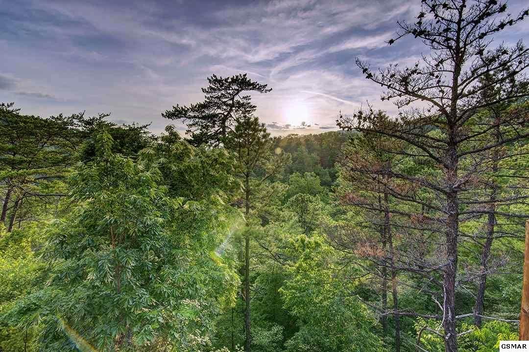 Lot 92 Parkside Retreat Way - Photo 1