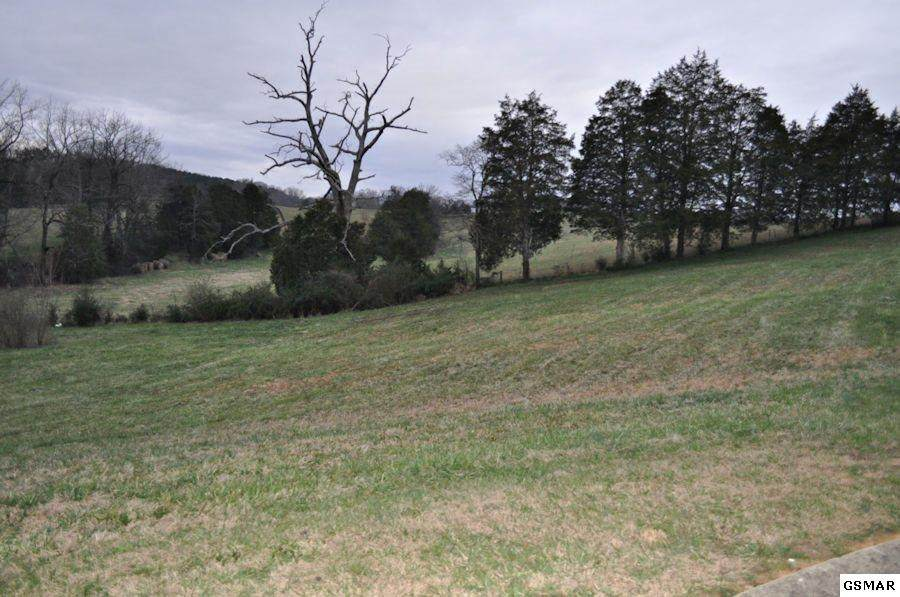 Lot 15 Tradition Lane - Photo 1