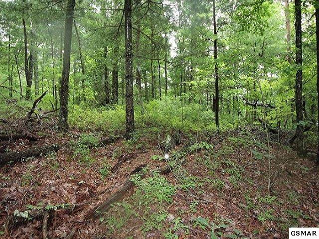 Lot 13 Little Mtn. Way, Townsend, TN 37882 (#228961) :: Four Seasons Realty, Inc