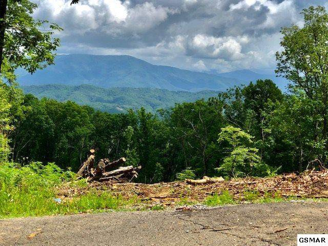 Lot 148 Mountaineer Trl, Sevierville, TN 37862 (#228998) :: Billy Houston Group