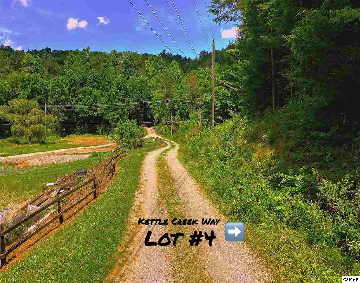 Lot #4 Kettle Creek Way - Photo 1