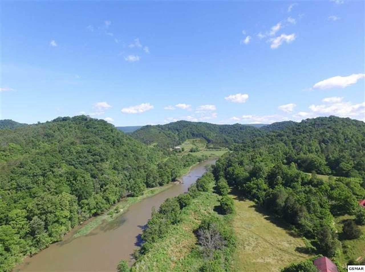 208.46 Acres Yellow Branch Road - Photo 1
