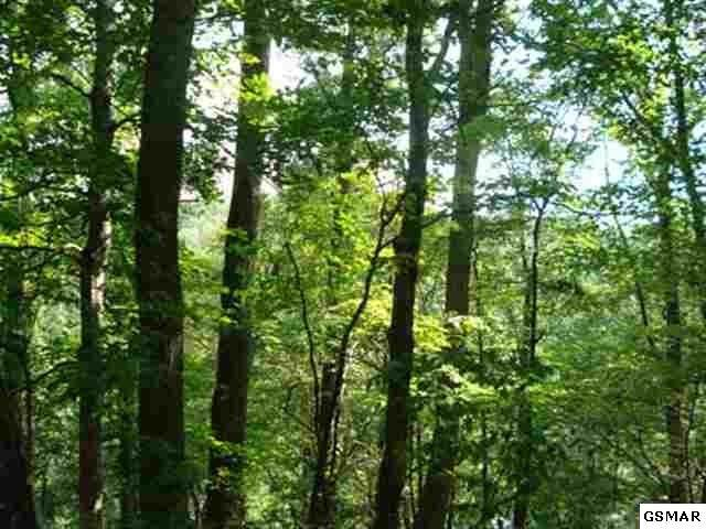 Lot 643 Rhododendron Ln, Sevierville, TN 37876 (#229674) :: The Terrell Team