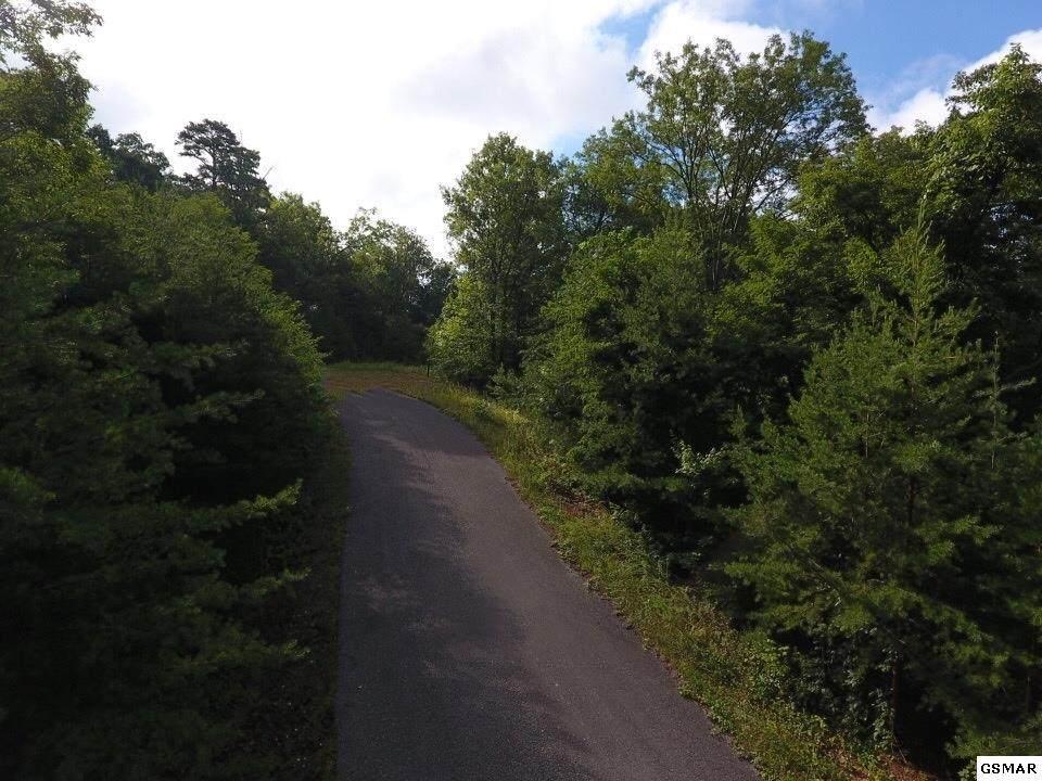 Lot 49 Mountain Ash Way - Photo 1