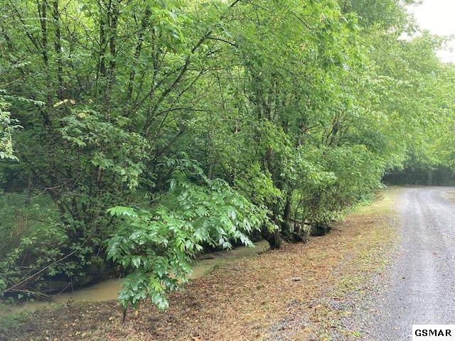 12+/- acres Bear Creek Rd, Bybee, TN 37713 (#229793) :: Four Seasons Realty, Inc