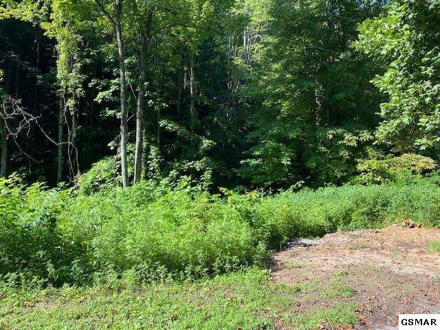 Lot 709A School House Gap Road, Sevierville, TN 37862 (#229837) :: Four Seasons Realty, Inc