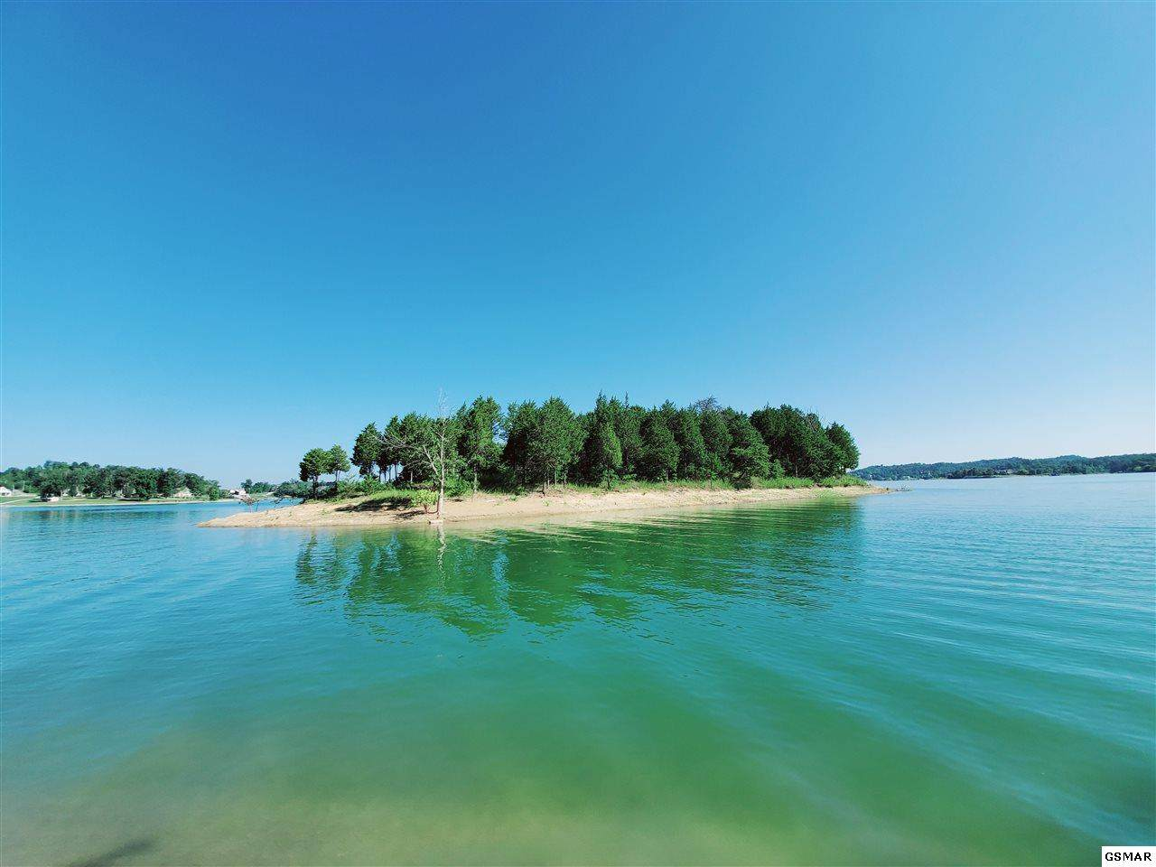 Parcel 018.00 Fox Island - Photo 1