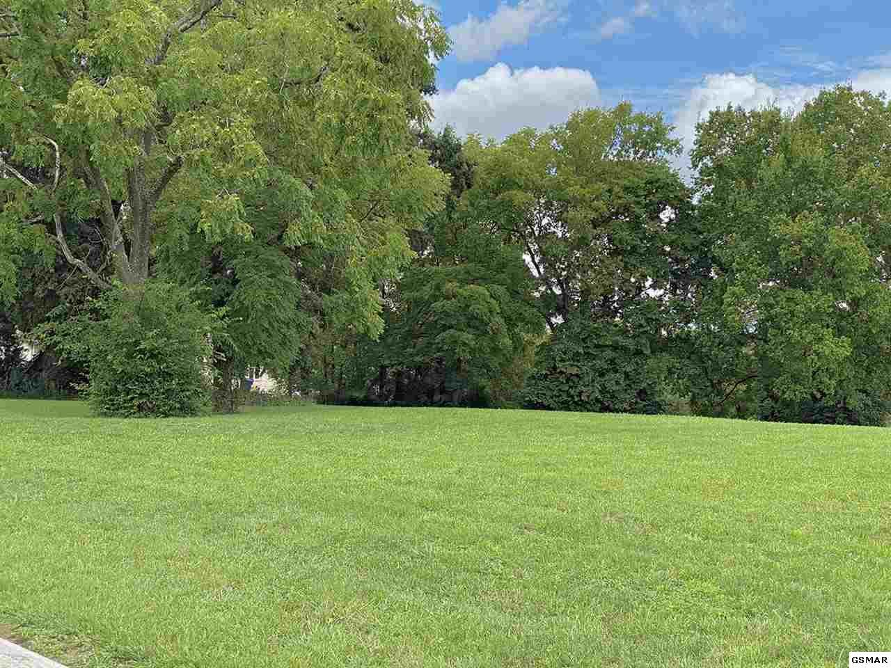 Lot 37 Big Oak Drive - Photo 1