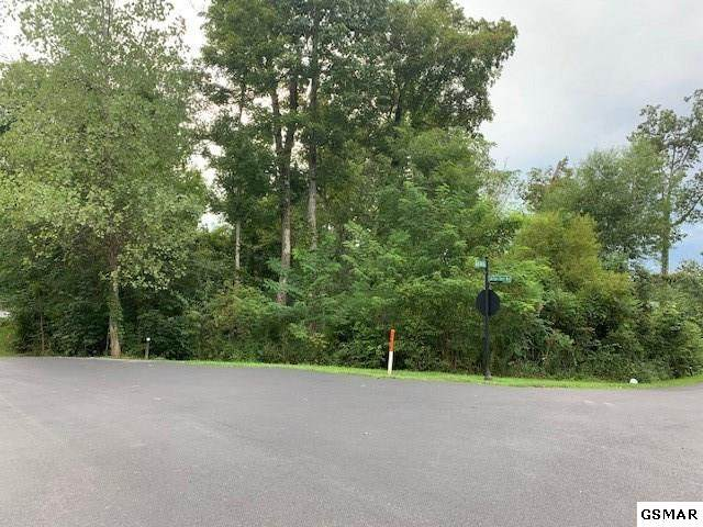 Lot 42 Rocky Point Way, Sevierville, TN 37876 (#229973) :: Colonial Real Estate