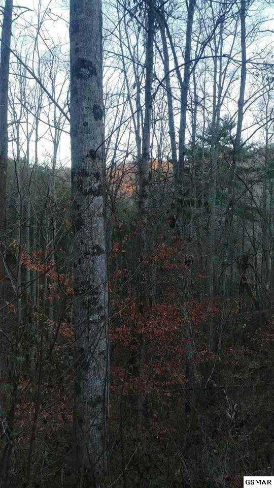 Lot 9 And 10 Patty View Way, Sevierville, TN 37862 (#229999) :: The Terrell Team
