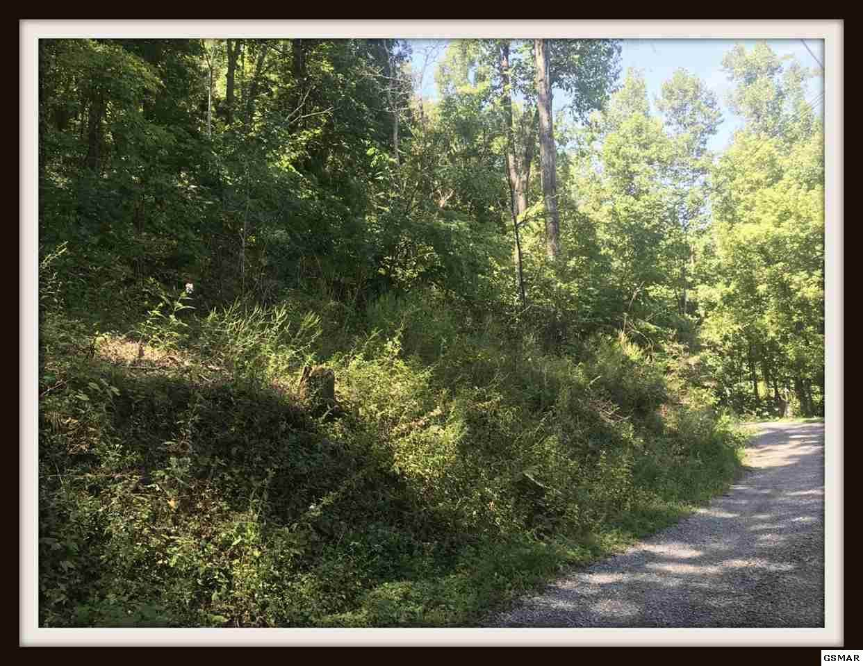 Lot Lonesome Pine Way - Photo 1