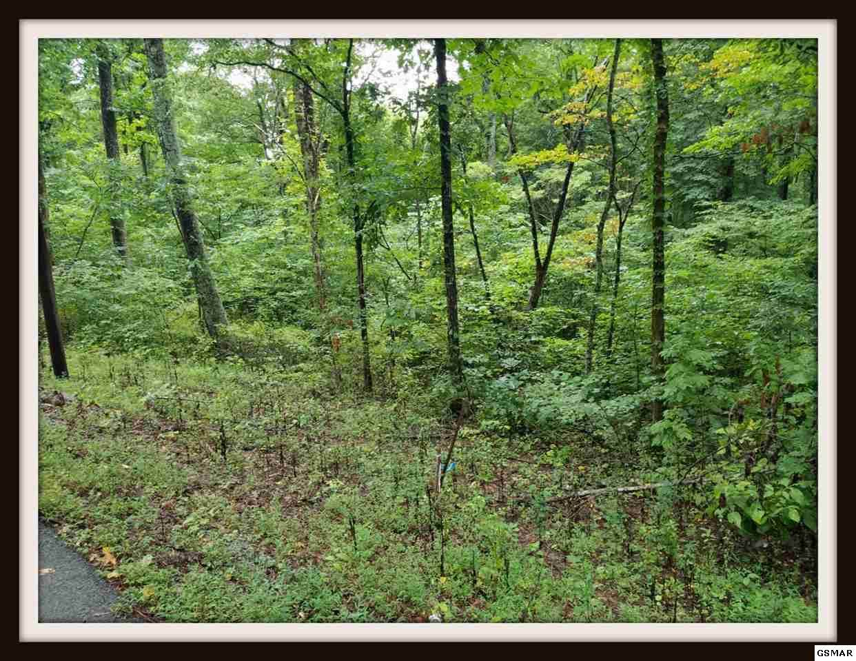 Lot 9A Blowing Cave Rd - Photo 1