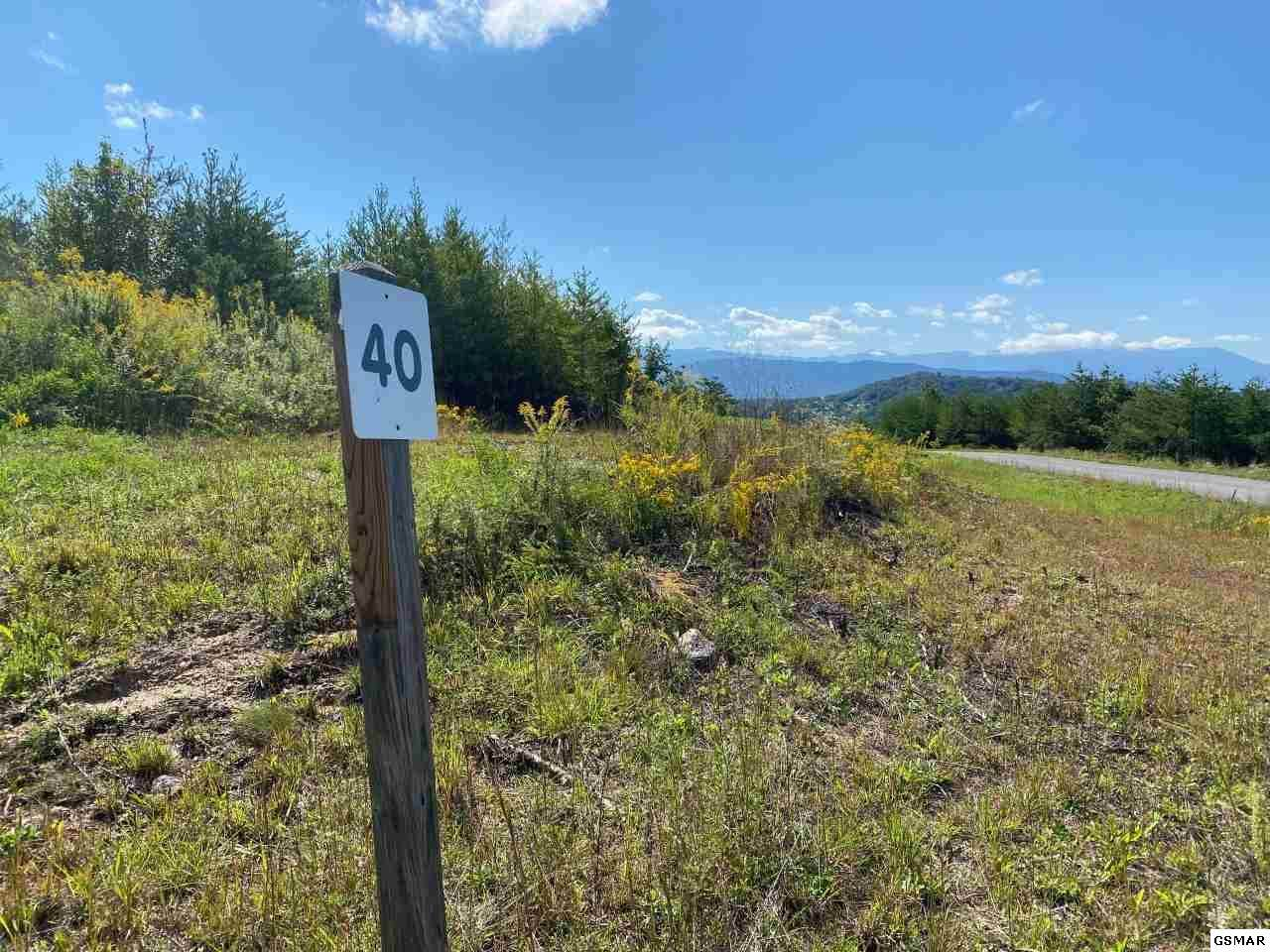 Lot 40 Mountain Ash Way - Photo 1