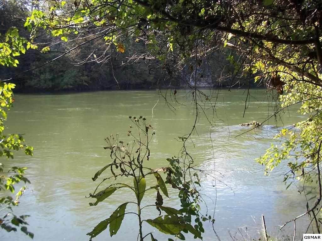 1943 River Mist Circle - Photo 1